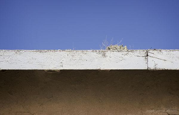 Dirt Roof