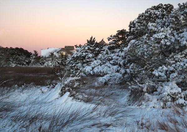 Daybreak in a Snowy Marsh