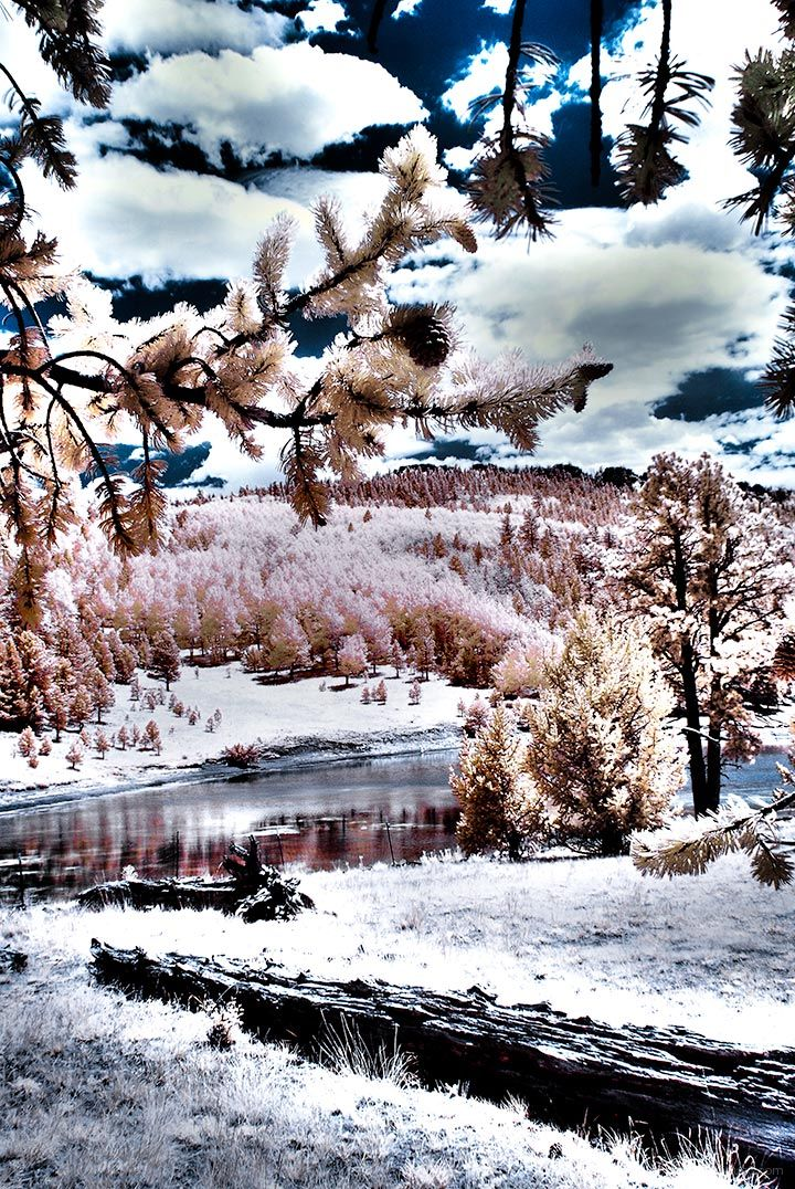 Shuree Pond # 1