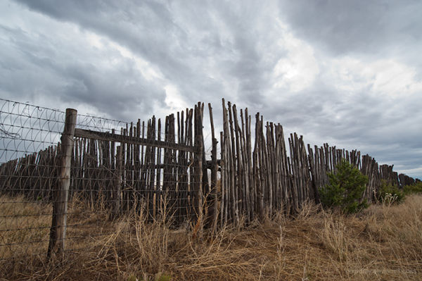 Coyote Fence