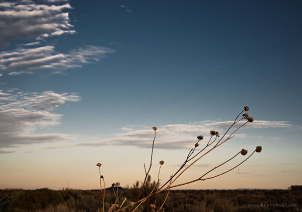 Simple Shapes:  Morning on the Mesa