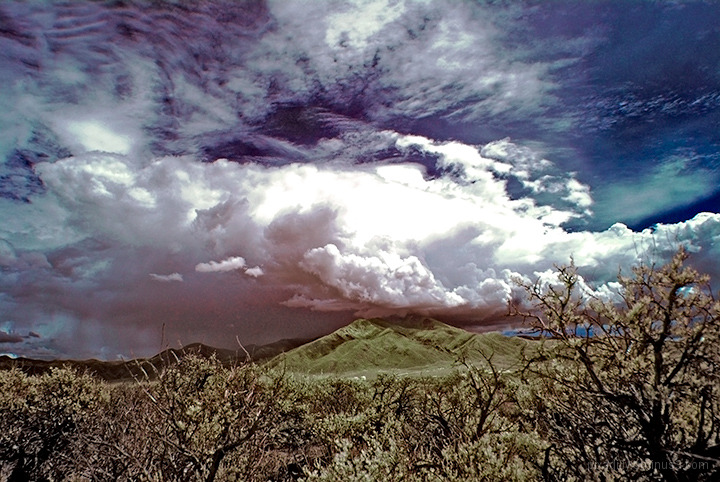 Taos Mountain in the Distance # 5
