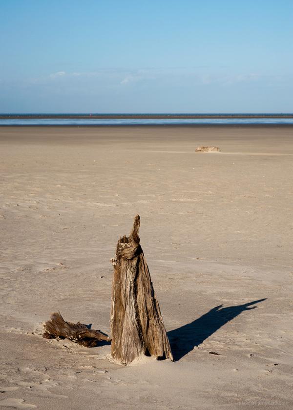 South Shore Totem