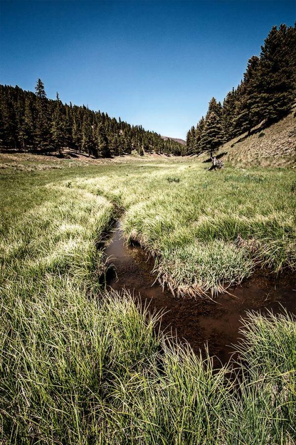 Valles Caldera Creek