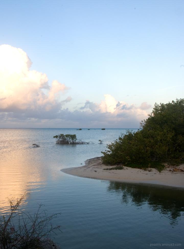 Dawn at the Flamingo Bridge