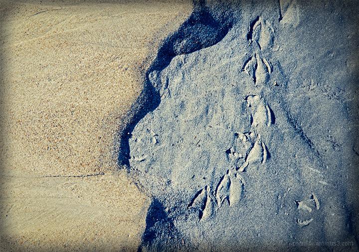 Sand Study 5