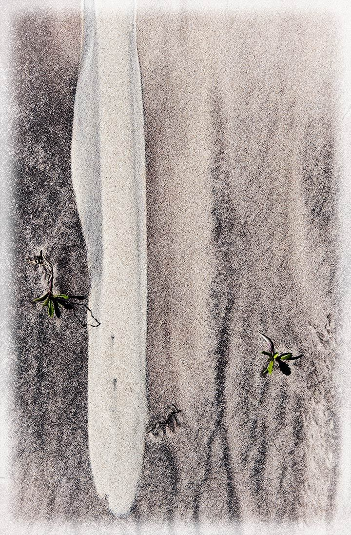 Sand Study 11