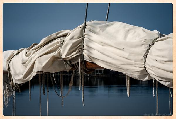 Skipjack 3