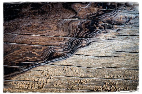 Sandy Log