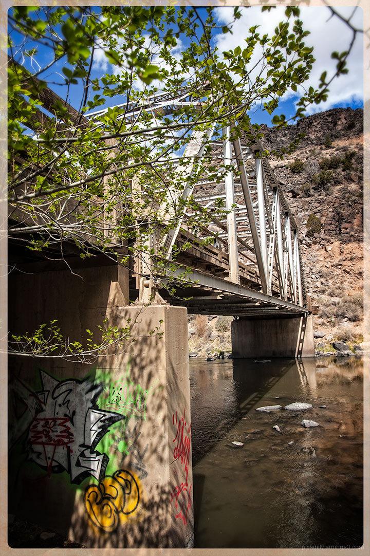 Under the John Dunn Bridge