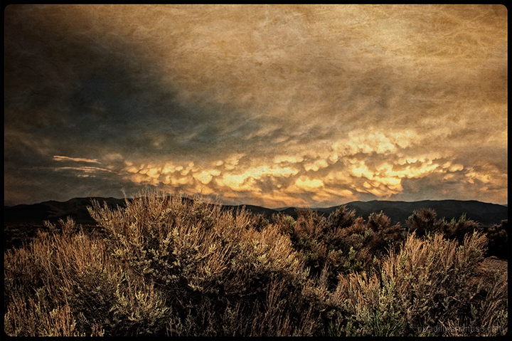 Dramatic Evening Sky