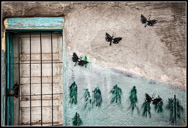 Butterflies One