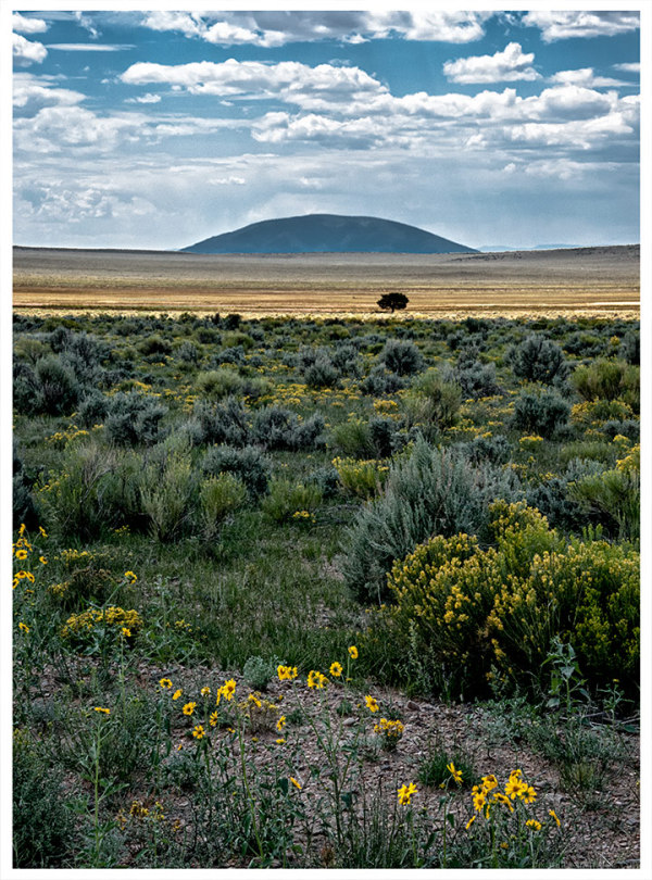 Ute Mountain from Colorado