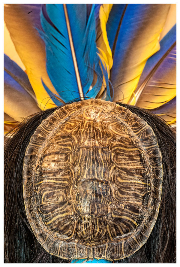 Turtle, Horsehair, and Feathers