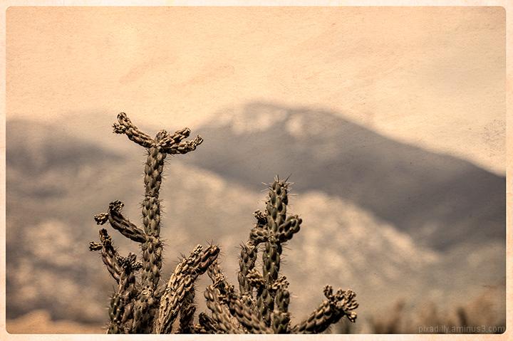 Taos Mountain - Old Postcard Simulation