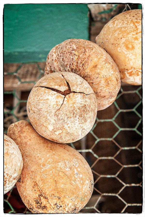 Round and Round:  Cracked Gourd