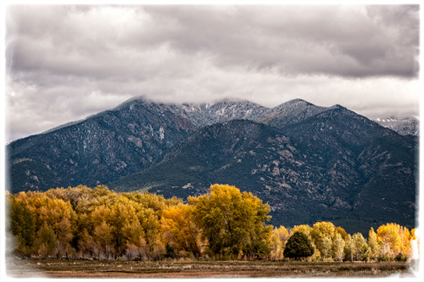 Cottonwoods and Taos Mountain