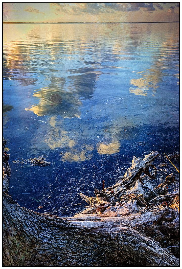 Reimagined:  Apalachicola Shoreline