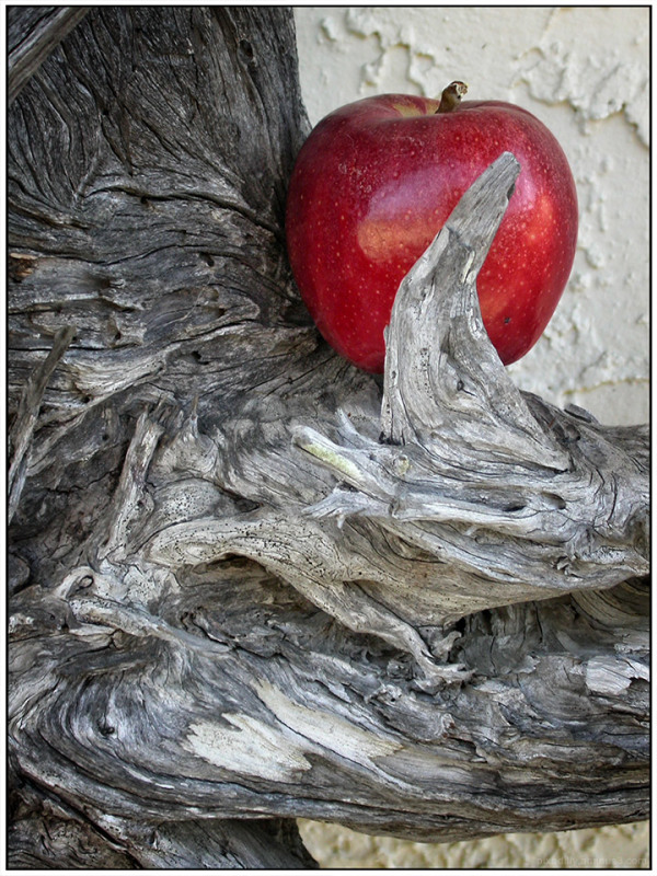 Apple in Cypress - Reimagined