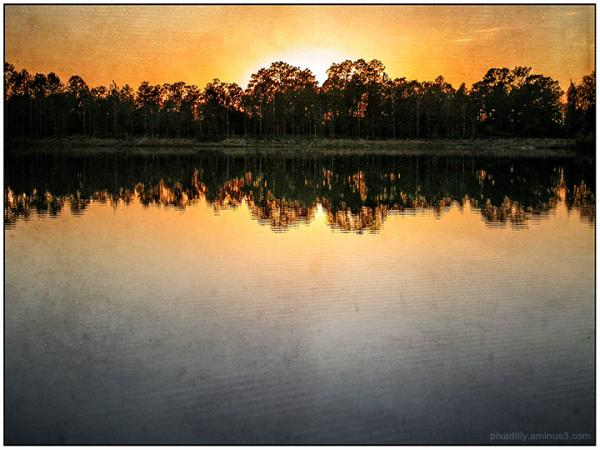 Florida Lakeside at Dawn:  Reimagined