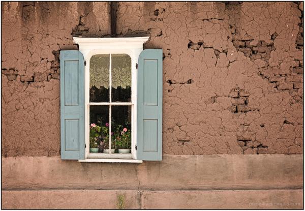 Salman Ranch Window