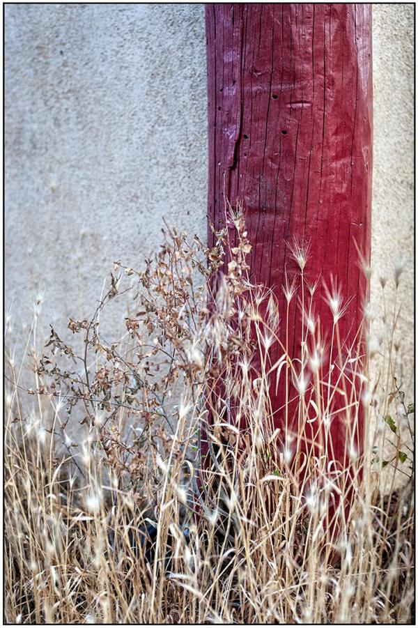Corner Post with Grasses