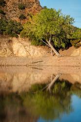 Santa Cruz Lake Reflections