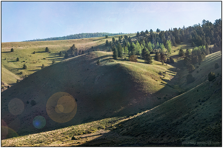 Local Landscapes:  Valle Vidal Morning