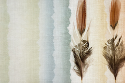 Quiet Images:  Feathers on Fabric