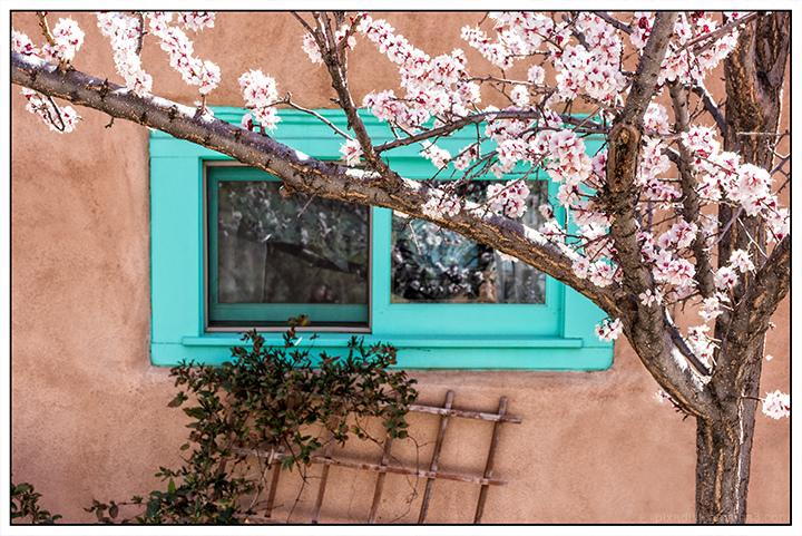 Ledoux Street Window