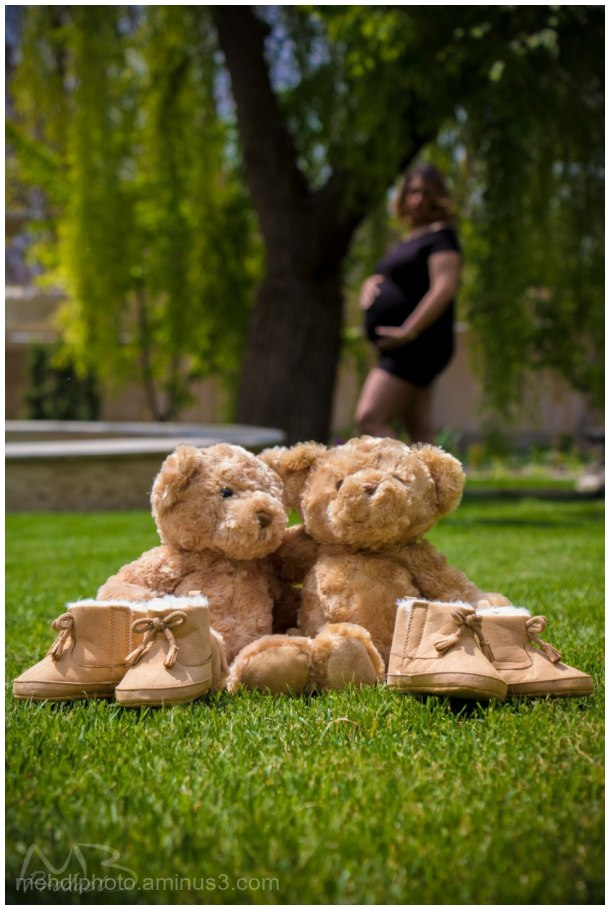 Twin pregnantsy05