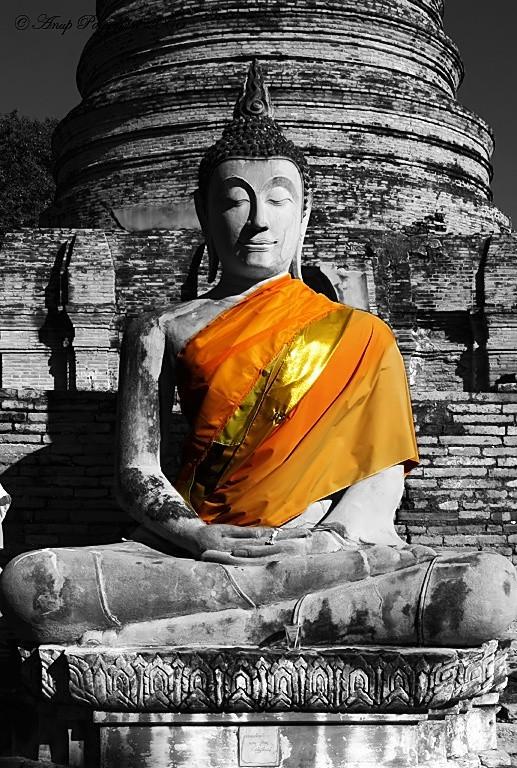 Budha statue at Ayutthaya Thailand