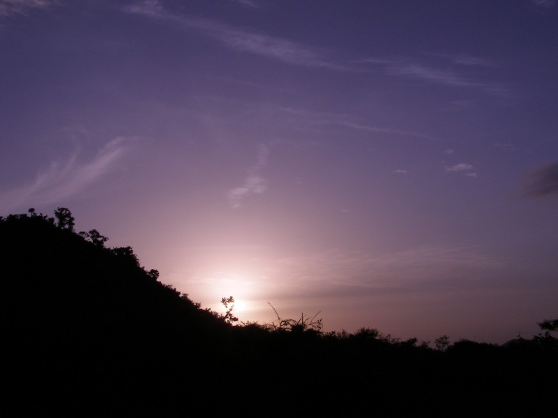 Dawn lights