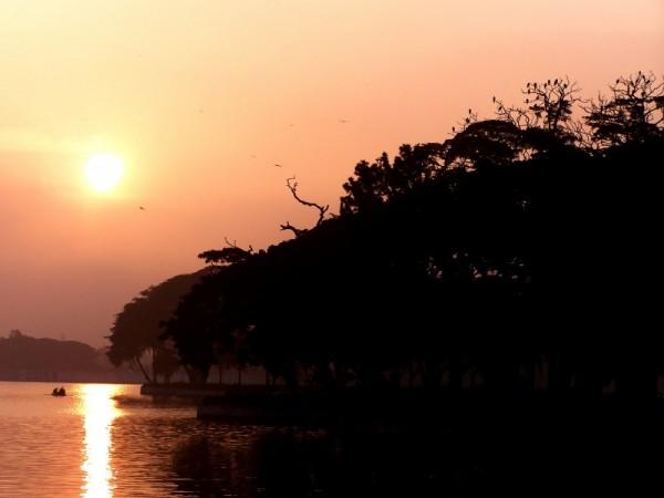 Altered Dawn