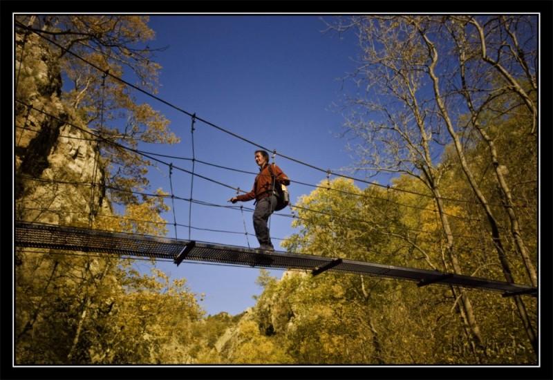 pont penjat