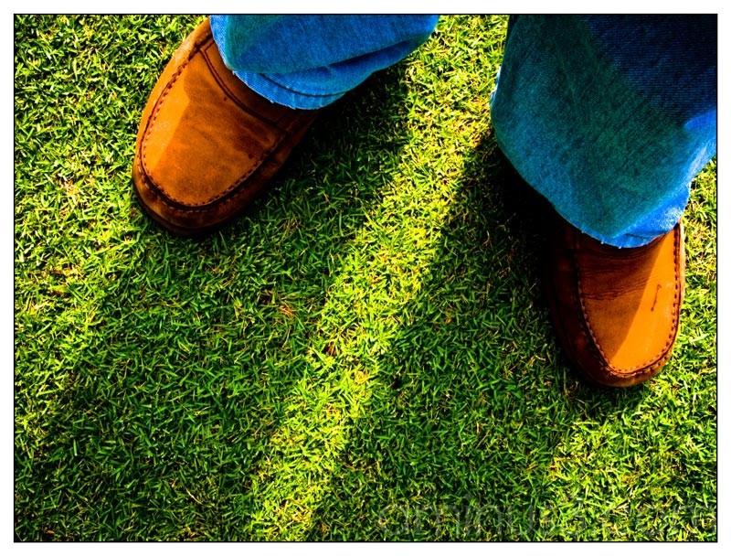 Life – Light Feet Shadow Walk