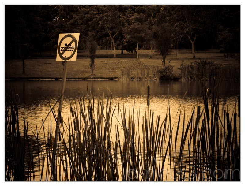 Life – No Swimming Allowed In The Water