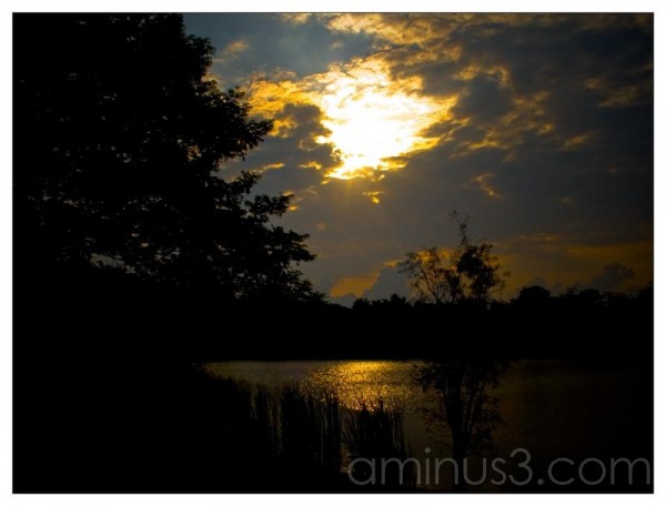Life – Morning Sun Shine Over The Waters
