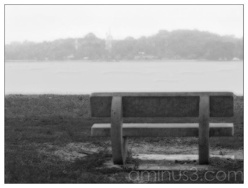 Life – Bench Facing The Water