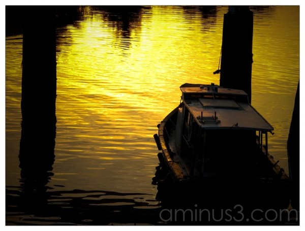 Life – Warm Yellow On Water