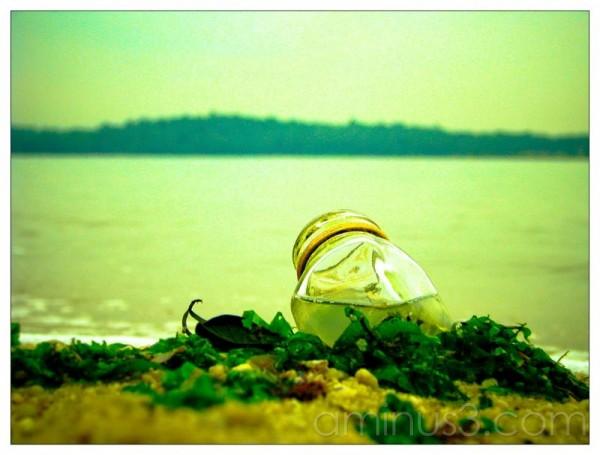 Life – Bottled Sea Water, Anyone?