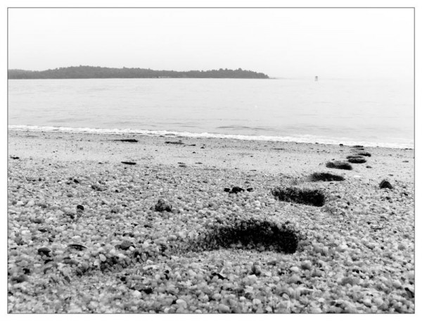Life – Footprints From The Water
