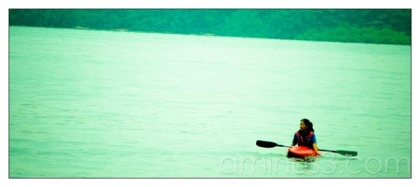 Life – Paddle It Alone In The Water III