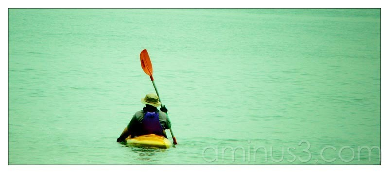 Life – Paddle It Alone In The Water V