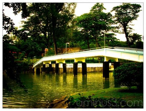 Life – Bridge Over Water III