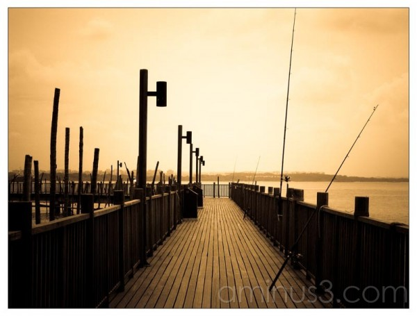 Life – Boardwalk Over The Water