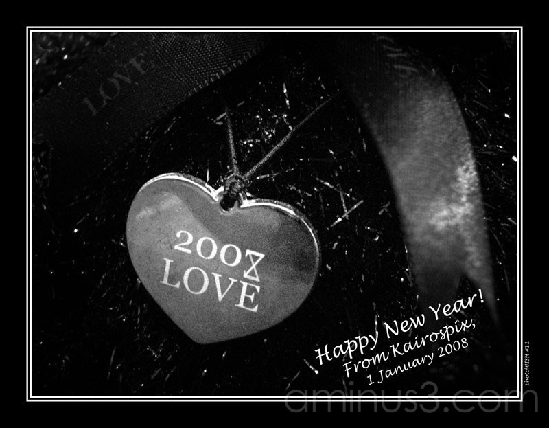Life's Details – 2008 Love (photoWISH #11)