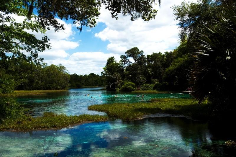 Rainbow Springs in FL
