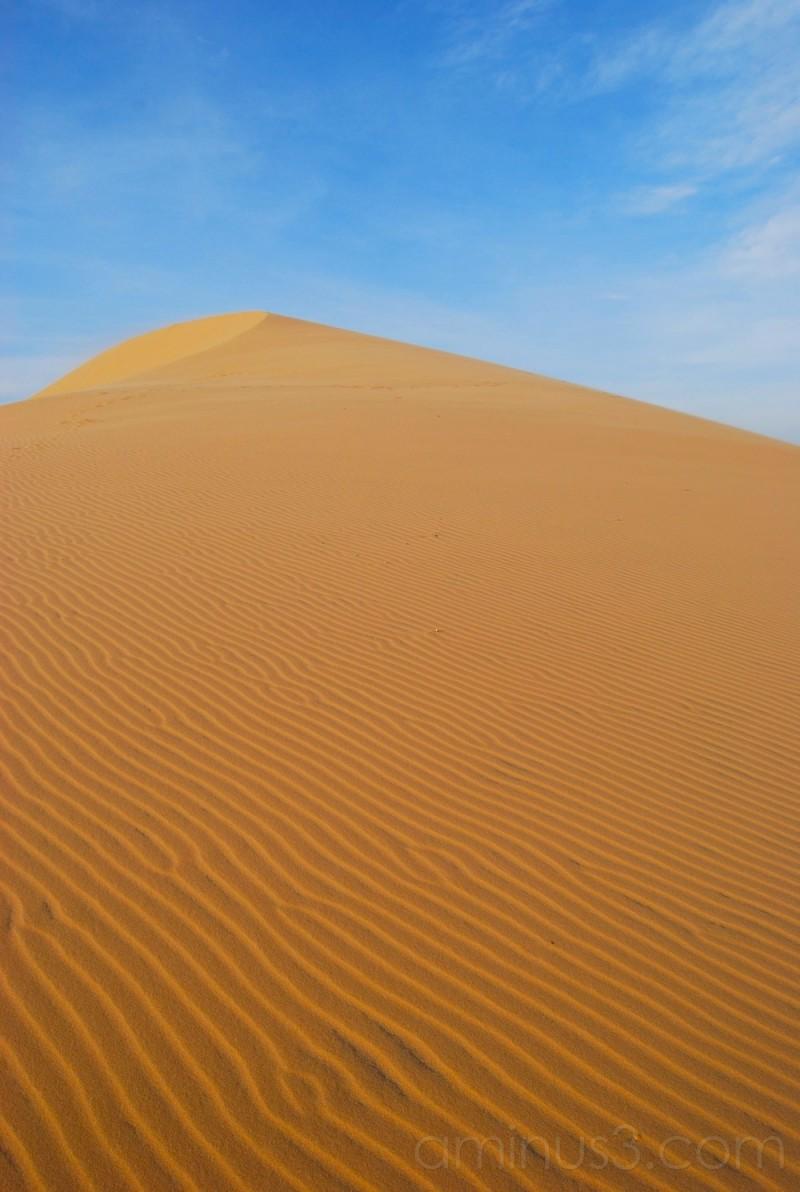 A Photogenic Sand Dune