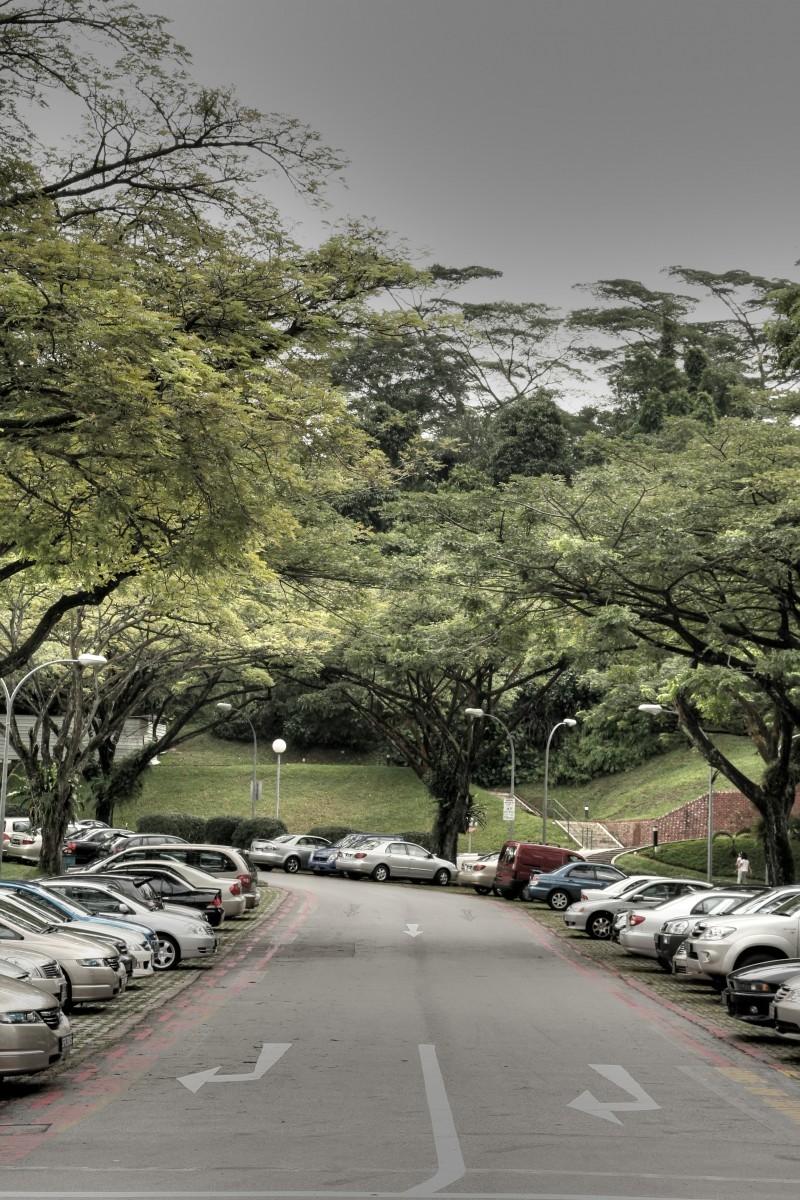 Carpark at NUS Business School